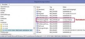 Windows-lädt-immer-temporäres-Profil-sie-wurden-mit-einem-temporären-Profil-angemeldet