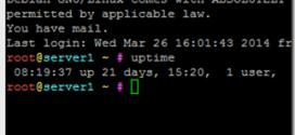 Uptime-Linux-anzeigen