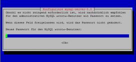 Debian-Webserver-Umgebung-Installieren-Apache-PHP-mySQP-phpMyAdmin-ProFTP (1)