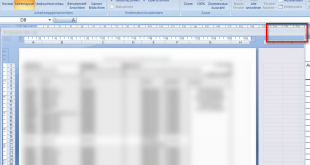 Excel Fenster kann nicht MAXIMIERT werden (1)