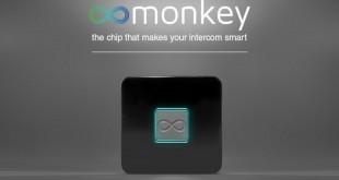 Monkey-Chip